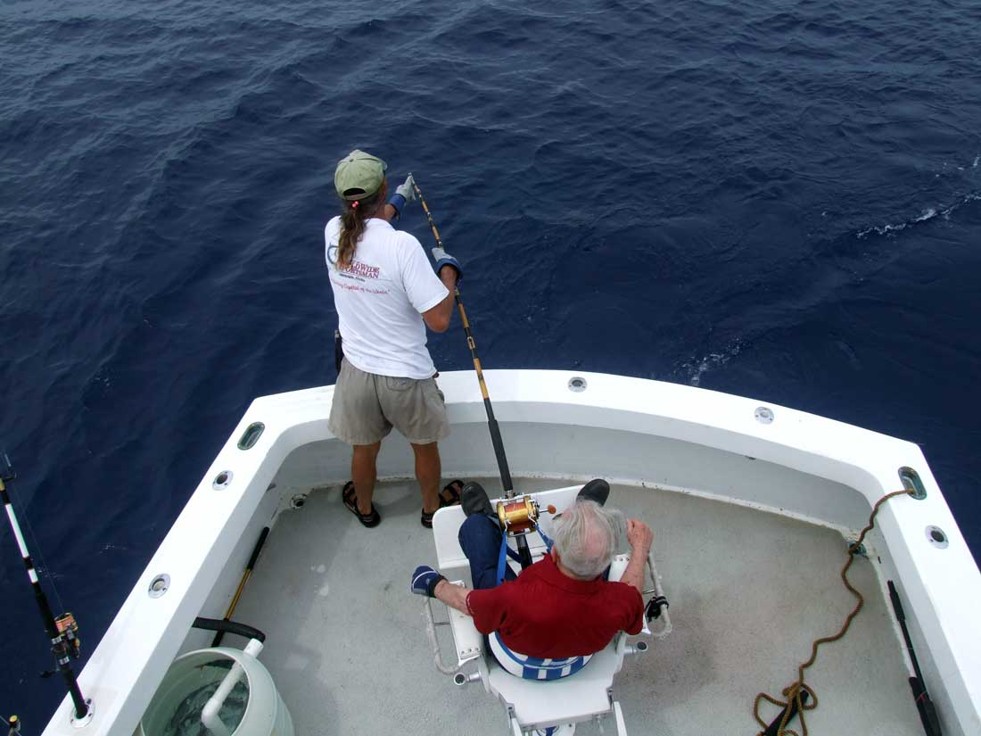 Shark fishing with florida keys fishing restless too for Shark fishing in florida