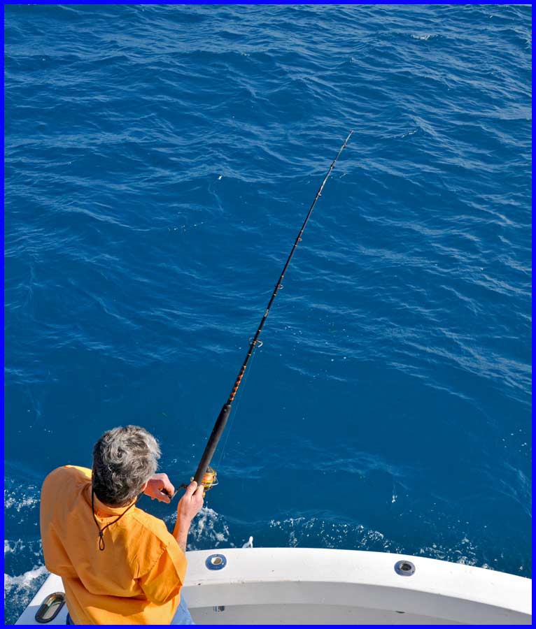 Dave hornig sailfishing islamorada fl for Florida keys fishing guides
